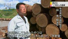 """狙われる""""ご神木""""8"""