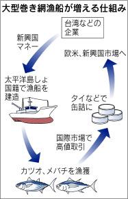 巻き網漁船が増える仕組み