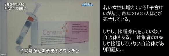 子宮頸がんワクチン1