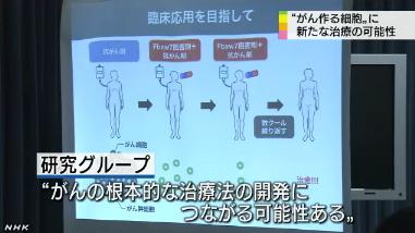 がん幹細胞⇒新治療の可能性4