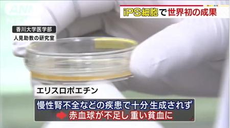 世界初「赤血球増やす細胞」生成成功3