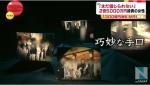 "MRI資産消失、""豪華接待""の裏に""不自然な実態""(TBSnewsI5月8日)3"