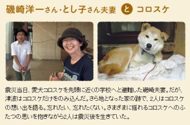 犬と猫と人間と2_1
