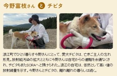 犬と猫と人間と2_2