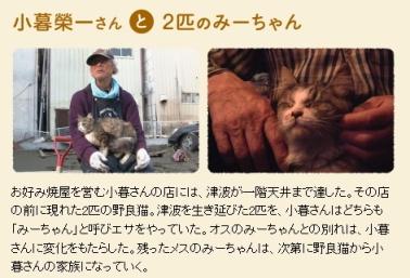 犬と猫と人間と2_3