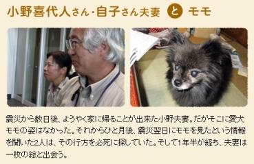 犬と猫と人間と2_4