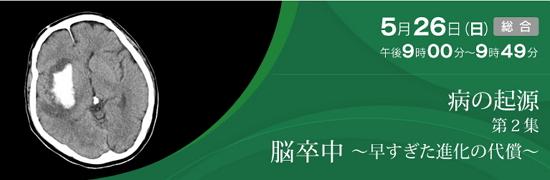 NHKスペシャル_脳卒中・早すぎた進化の代償
