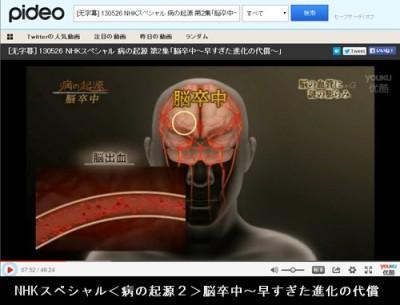 NHKスペシャル<病の起源2>脳卒中~早すぎた進化の代償_動画情報画像