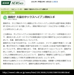 国税庁 大量のタックスヘイブン資料入手(NHK13-6-1)