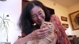 原発と、猫の「福ちゃん」の物語1