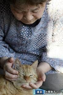 原発と、猫の「福ちゃん」の物語4
