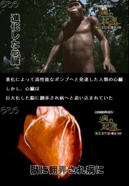 病の起源4・心臓病02