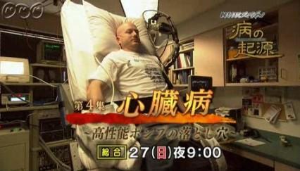 病の起源4・心臓病04