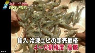 海外でエビ大量死 輸入冷凍エビの価格高騰