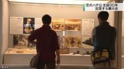 「ハチ公」展_NHKニュース_キャプチャ4