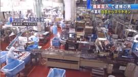 アクリフーズ群馬工場の冷凍食品製造作業の画像1