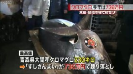 築地初セリ2014、最高値は大間産マグロ「736万円」_マグロを披露する「すしざんまい」_画像1
