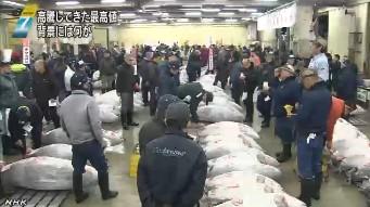 築地市場で新春恒例の初競り(NHKニュース2014年1月5日)画像_02