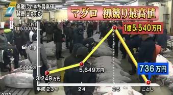 築地市場で新春恒例の初競り(NHKニュース2014年1月5日)画像_11