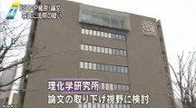 STAP細胞、写真流用の疑いで理研が調査開始_NHK2014-3-11_画像7