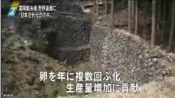 富岡製糸場_世界遺産に登録の見通し(NHKニュース4月26日)_画像20