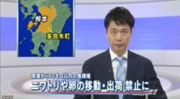 熊本でH5型鳥インフルエンザウイルス検出(NHK4月13日12時20分)_2