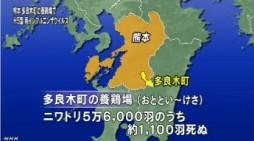 熊本でH5型鳥インフルエンザウイルス検出(NHK4月13日12時20分)_3
