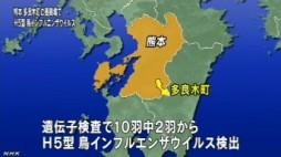 熊本でH5型鳥インフルエンザウイルス検出(NHK4月13日12時20分)_4
