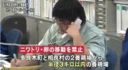 熊本でH5型鳥インフルエンザウイルス検出(NHK4月13日12時20分)_5