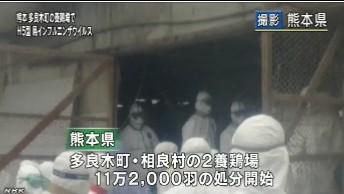 熊本でH5型鳥インフルエンザウイルス検出(NHK4月13日12時20分)_7