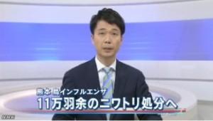 熊本の鳥インフル ニワトリの処分進める_NHK4月13日18時11分
