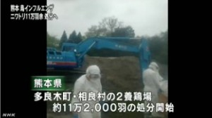熊本の鳥インフル ニワトリの処分進める_NHK4月13日18時11分_1