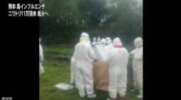 熊本の鳥インフル ニワトリの処分進める_NHK4月13日18時11分_2