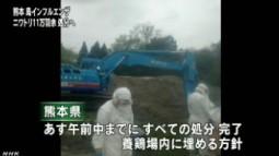 熊本の鳥インフル ニワトリの処分進める_NHK4月13日18時11分_3