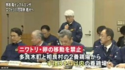 熊本の鳥インフル ニワトリの処分進める_NHK4月13日18時11分_4