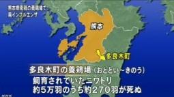鳥インフルエンザ、熊本・多良木町で2羽から検出(NHK4月13日10時10分)_画像3