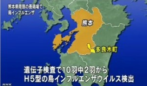 鳥インフルエンザ、熊本・多良木町で2羽から検出(NHK4月13日10時10分)_画像5