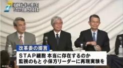 1STAP問題でセンターの解体求める_理研改革委の提言_NHKニュース6月12日.jpg_
