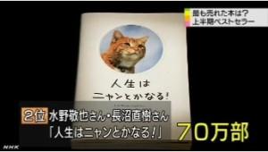 ことし上半期のベストセラー_2014年_NHKニュース6月1日_画像4