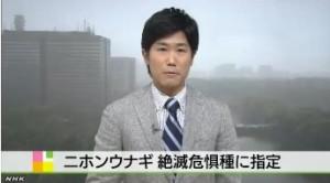 ニホンウナギ 絶滅危惧種に指定_NHKニュース6月12日_1