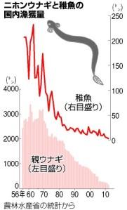 ニホンウナギと稚魚の国内漁獲量_グラフ