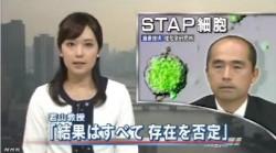 分析結果、STAPの存在否定<若山教授・記者会見>NHKニュース2014年6月16日_画像02
