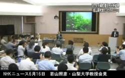分析結果、STAPの存在否定<若山教授・記者会見>NHKニュース2014年6月16日_画像03