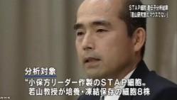 分析結果、STAPの存在否定<若山教授・記者会見>NHKニュース2014年6月16日_画像05