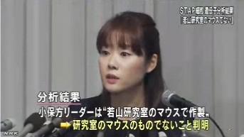 分析結果、STAPの存在否定<若山教授・記者会見>NHKニュース2014年6月16日_画像08