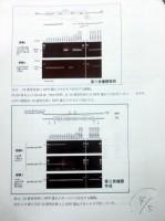 若山照彦・山梨大学教授が16日の記者会見で配布した会見資料「第三者機関の解析結果について」Page5の4