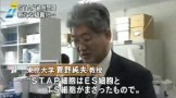 STAP 存在に新たな疑念(NHKニュース2014年6月3日)_画像07