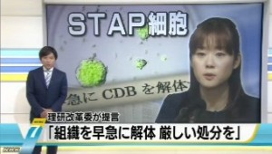 STAP問題でセンターの解体求める_NHKニュース6月12日