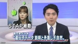 STAP細胞 遺伝子データに説明と矛盾する点(NHKニュース6月11日)_1