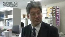 STAP細胞 遺伝子データに説明と矛盾する点(NHKニュース6月11日)_6
